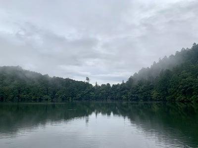 池神社の自然