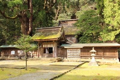 若狭姫神社(若狭彦神社下社)の本殿