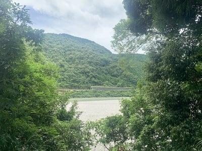 浄薬寺(楊枝薬師堂)の自然