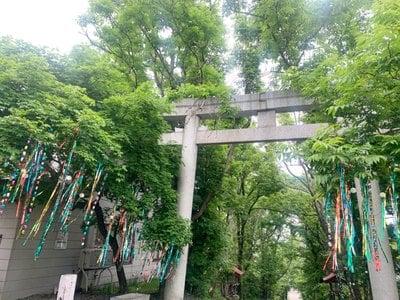 釧路一之宮 厳島神社の鳥居
