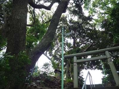 森浅間神社の自然
