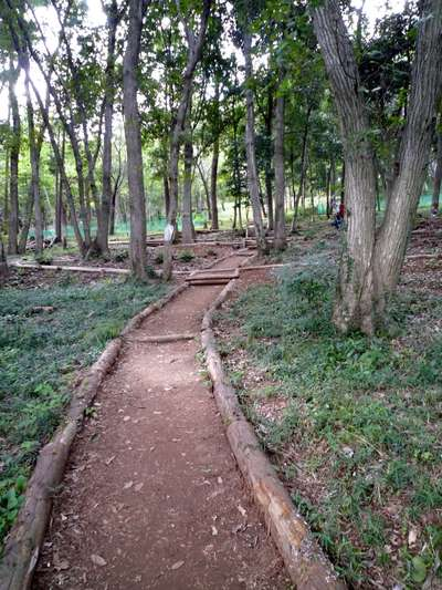 金刀比羅神社の自然