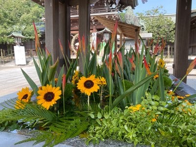 宮地嶽神社(福岡県)