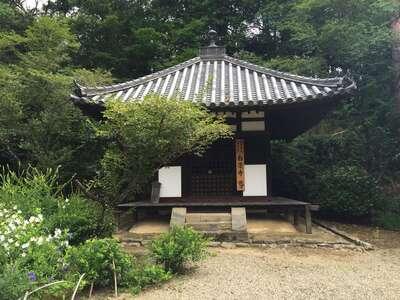 白毫寺の本殿