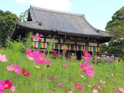 般若寺の本殿