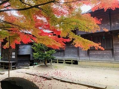 滑川神社 - 仕事と子どもの守り神の庭園