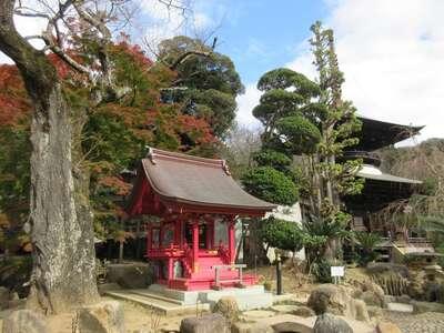楽法寺(雨引観音)の本殿