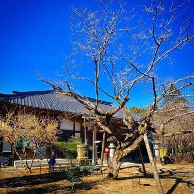 元三大師安楽寺の本殿