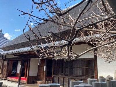 金剛寺の本殿