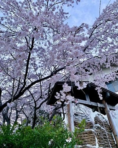滑川神社 - 仕事と子どもの守り神の周辺