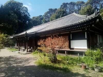 浄瑠璃寺の本殿