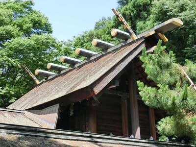 長浜八幡宮の本殿
