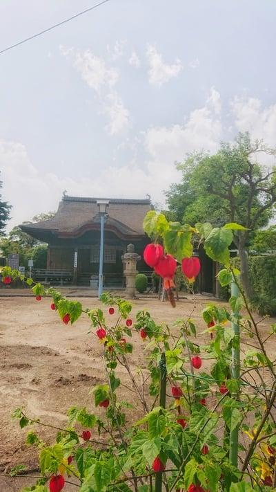 性海寺の自然