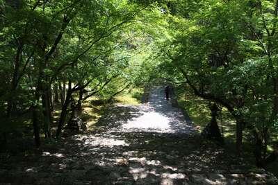 竹林寺(高知県)
